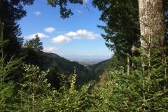 Aussicht über das Sulzbachtal von einem Wanderweg